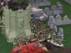 madison-october-apocalypse-game-15